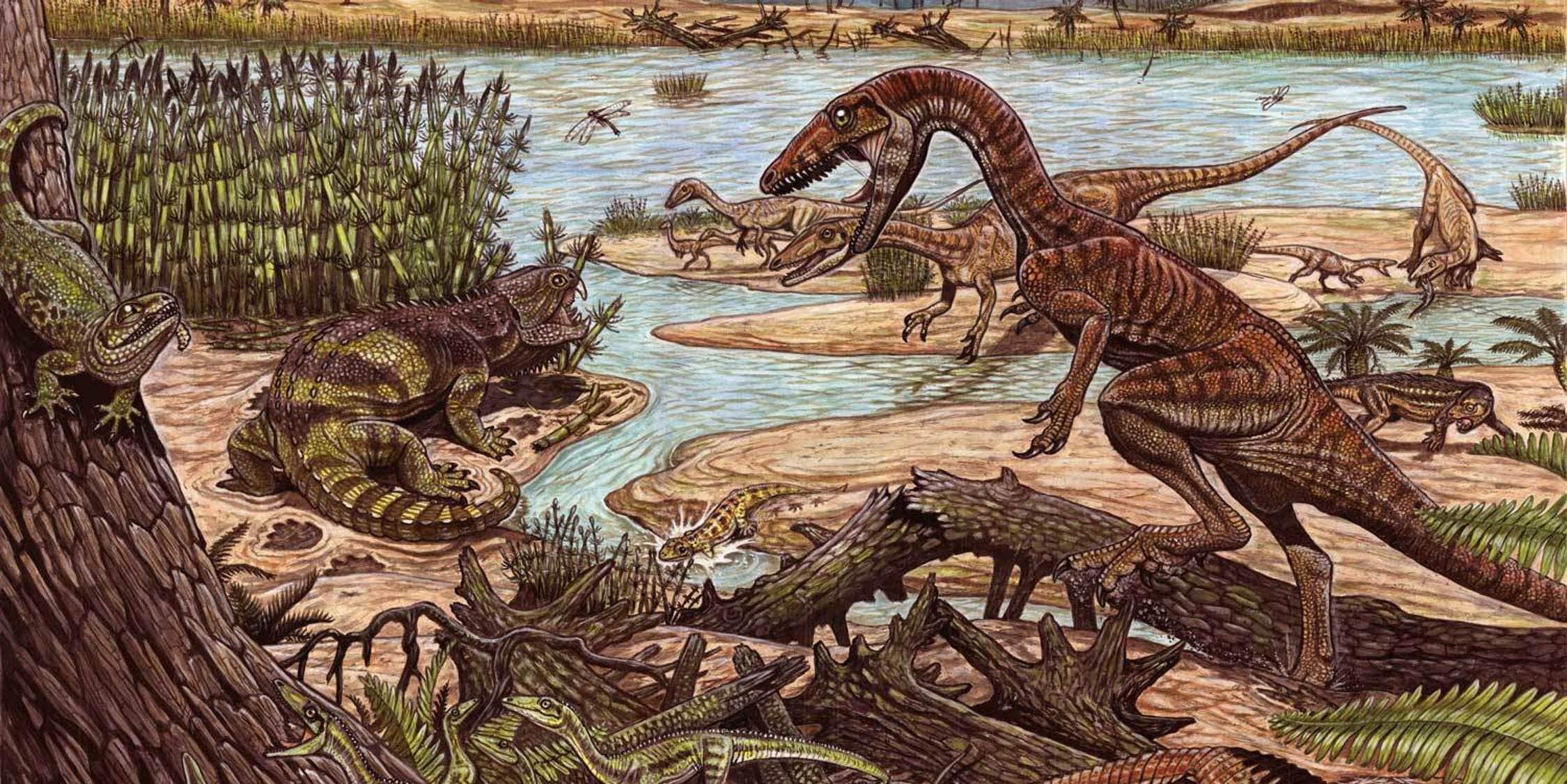 This illustration shows a group of 7 Ixalerpeton in the low left corner. Aetosaur in the low right corner. Sphenodont on the tree (upper left corner) and rhynchosaur on the ground next to it. One large Buriolestes (at first plane, upper right corner) and 6 behind. Small rauisuchian right to the large Buriolestes. Small amphibian (yellow) in the center of the image.