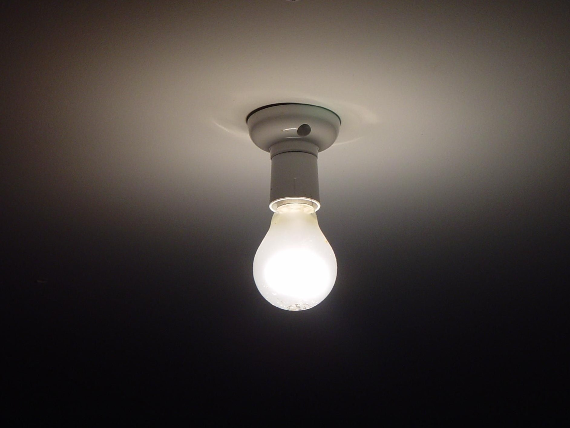 Want to Seem Like a Genius? Talk About Light Bulbs a Lot