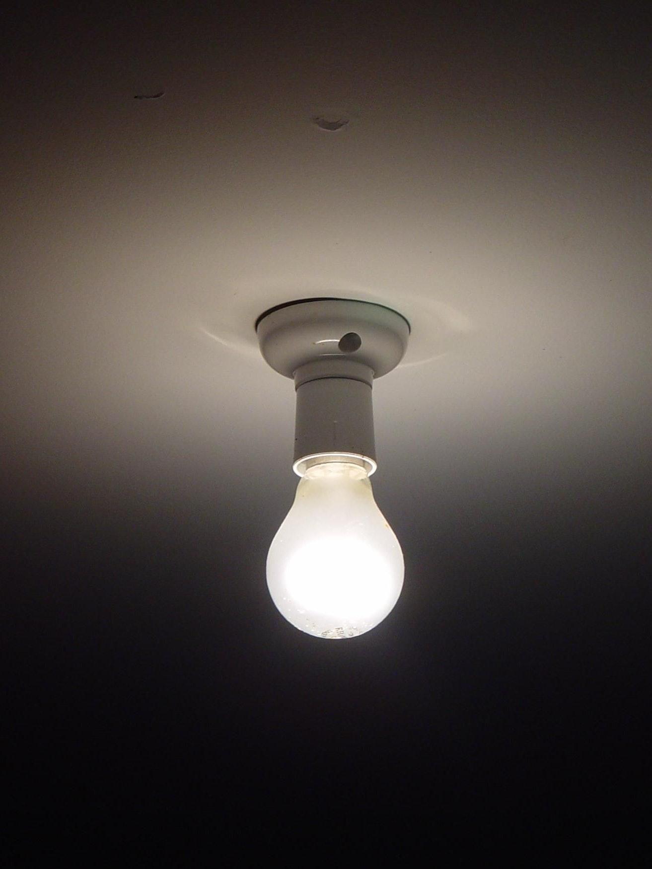 Genius light bulb