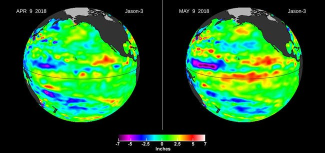 Left, in April, the Jason-3 satellite shows most of the Pacific Ocean at neutral heights (green). In May, a Kelvin wave (red) appears on the equator.