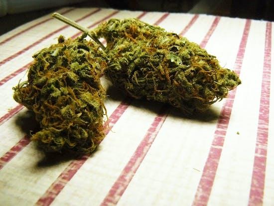 Marijuana Strain Descriptions Are Bunk, Chemist Says
