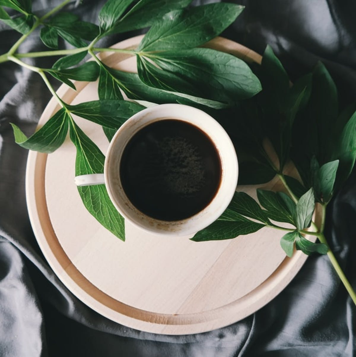 Best Drip Coffee Maker For Home