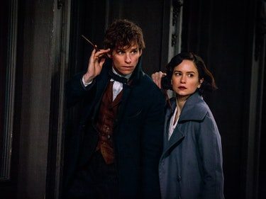Pottermore Illustrations Hint at Next 'Fantastic Beasts' Movies