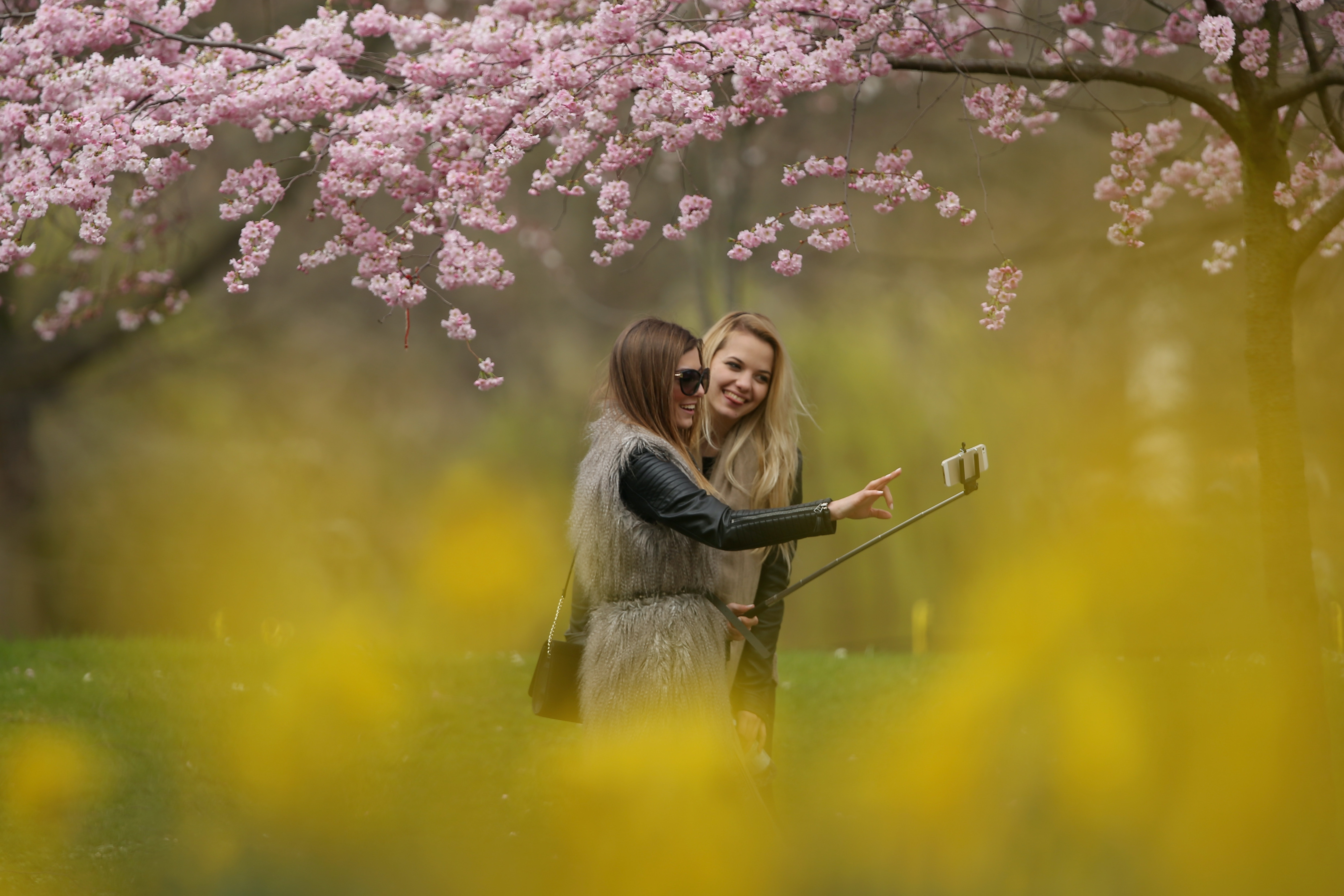 Nature selfies might be more useful than we think.