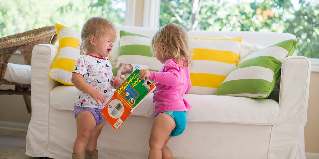 twins fight over book