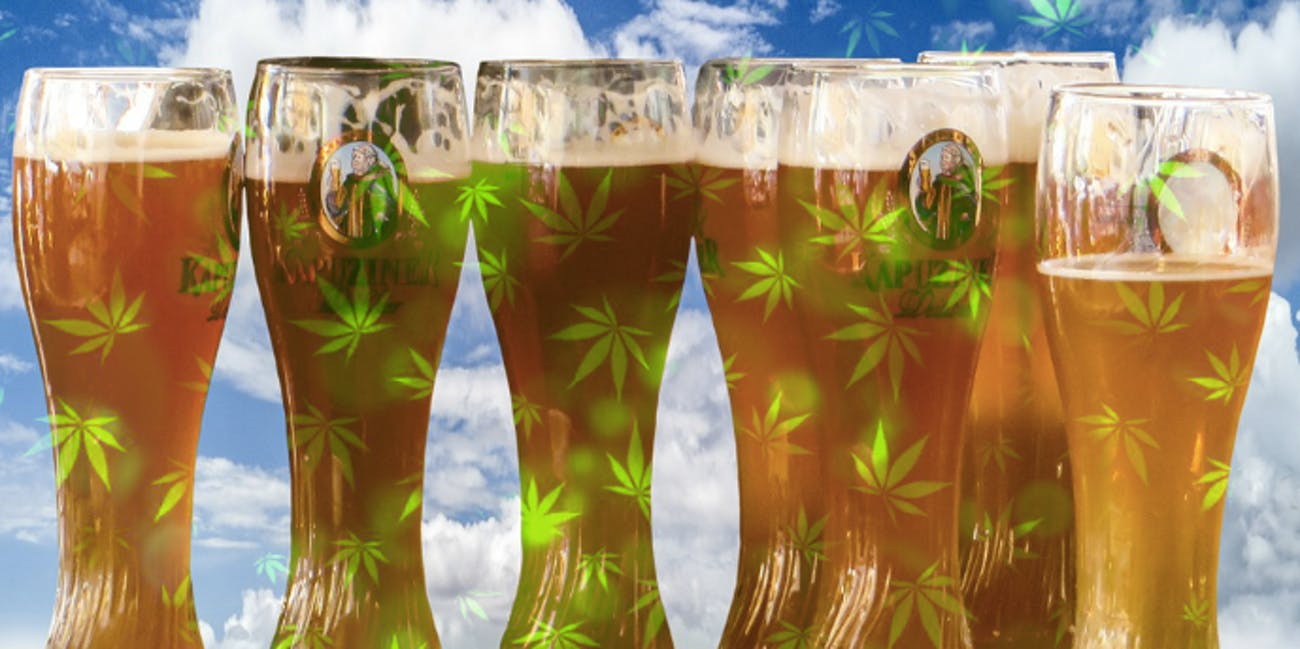 Sometimes beer can smell like beer but can weed actually be beer?