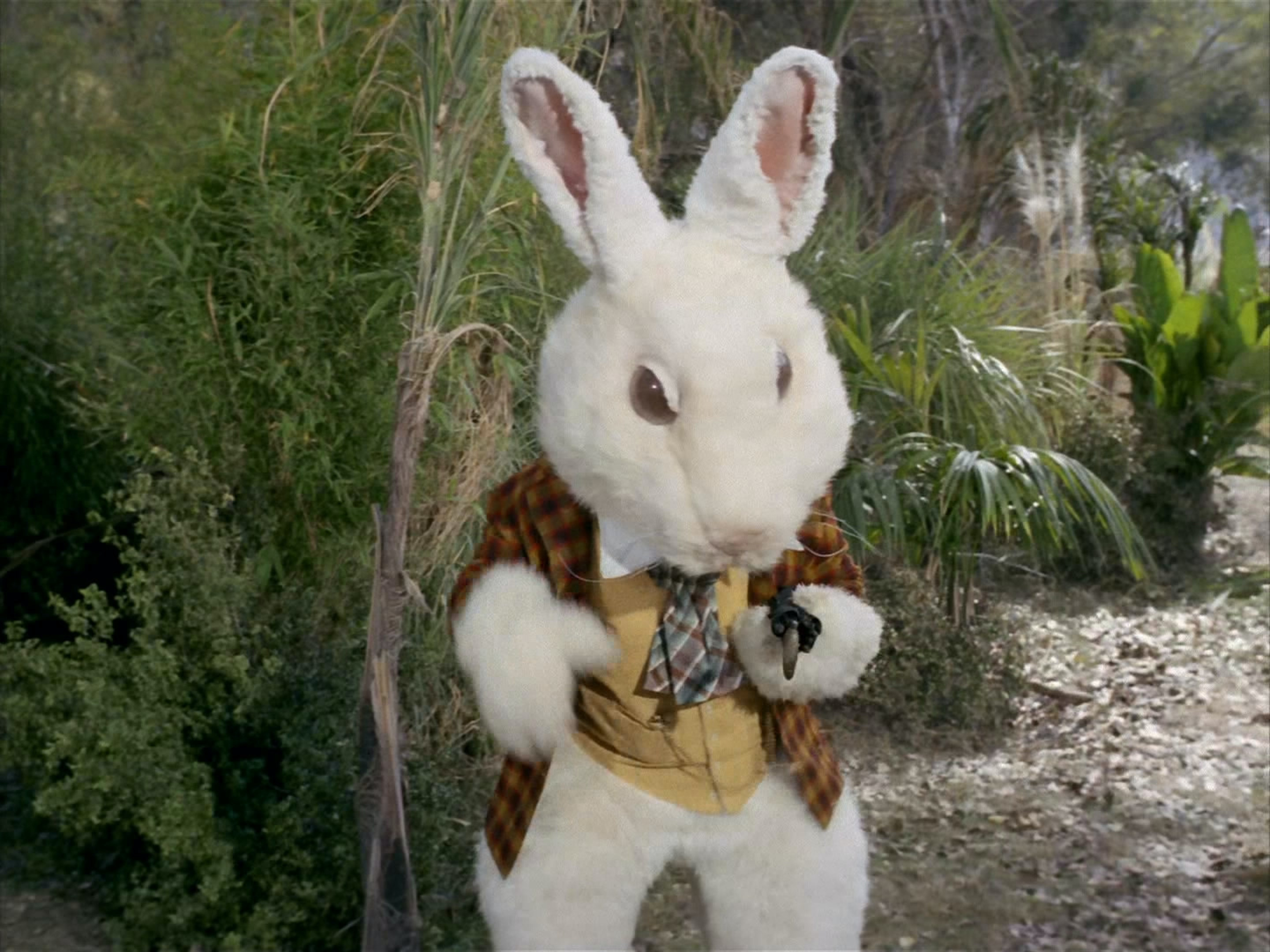 The White Rabbit is a robot in this 'Star Trek' episode. As far as we know, no one has sex with it.
