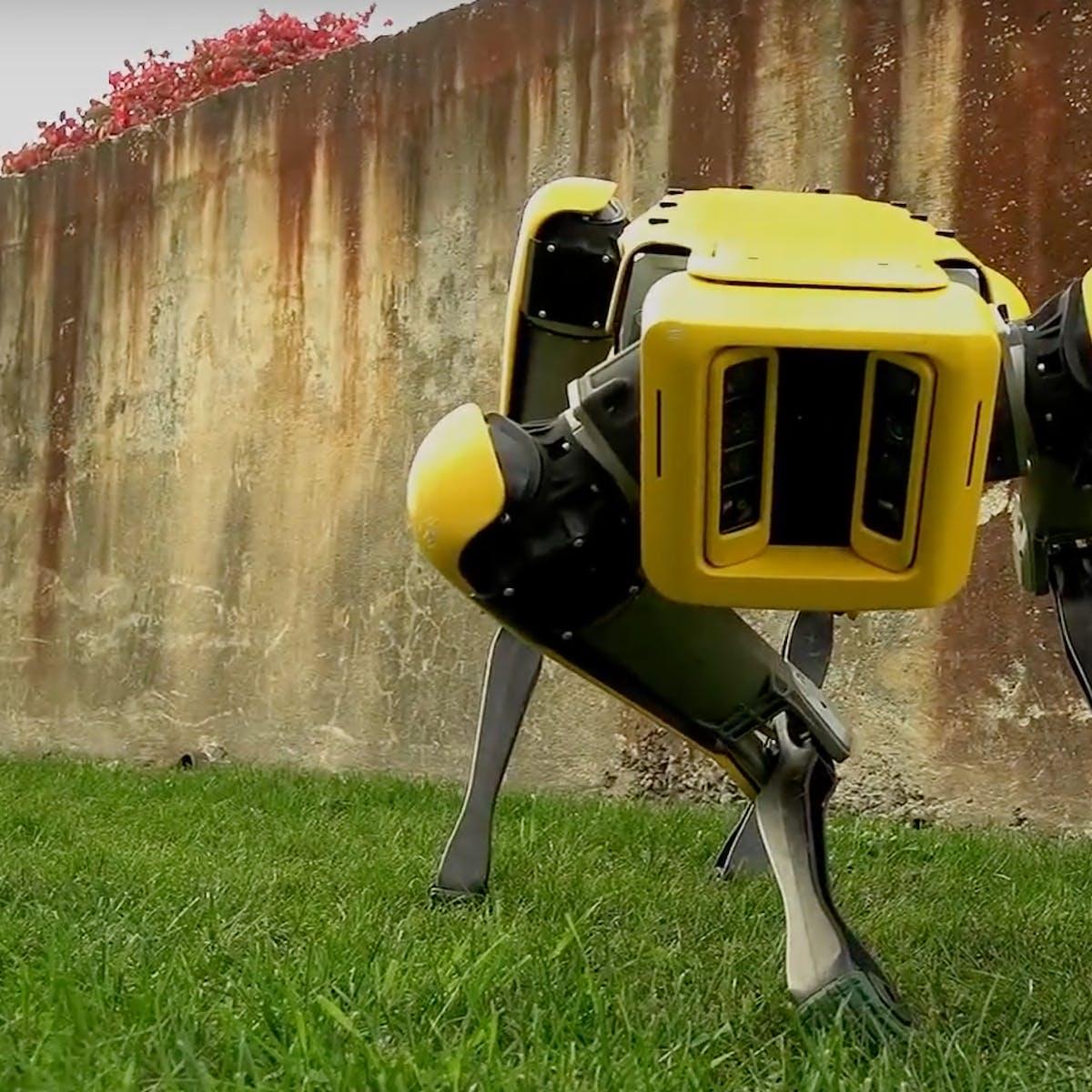 Boston Dynamics: The Latest SpotMini Is Still a Creepy Robot