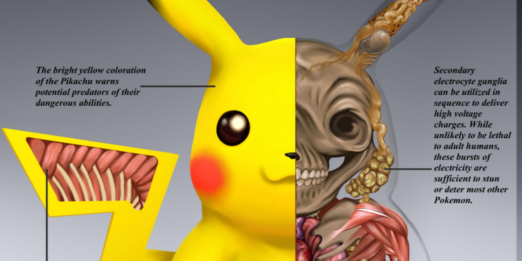 Pikachu is a Pokmon that is drawn here.