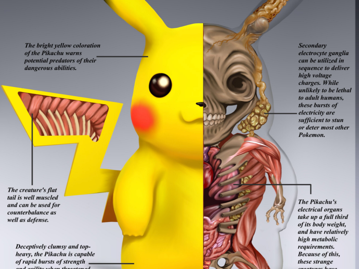 Pokéanatomy Is a Thing, and It's Bizarrely Fascinating