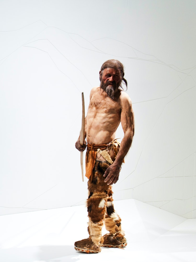 Ötzi the Iceman's Been Busy Offering Gifts to Science The ... |Otzi The Iceman