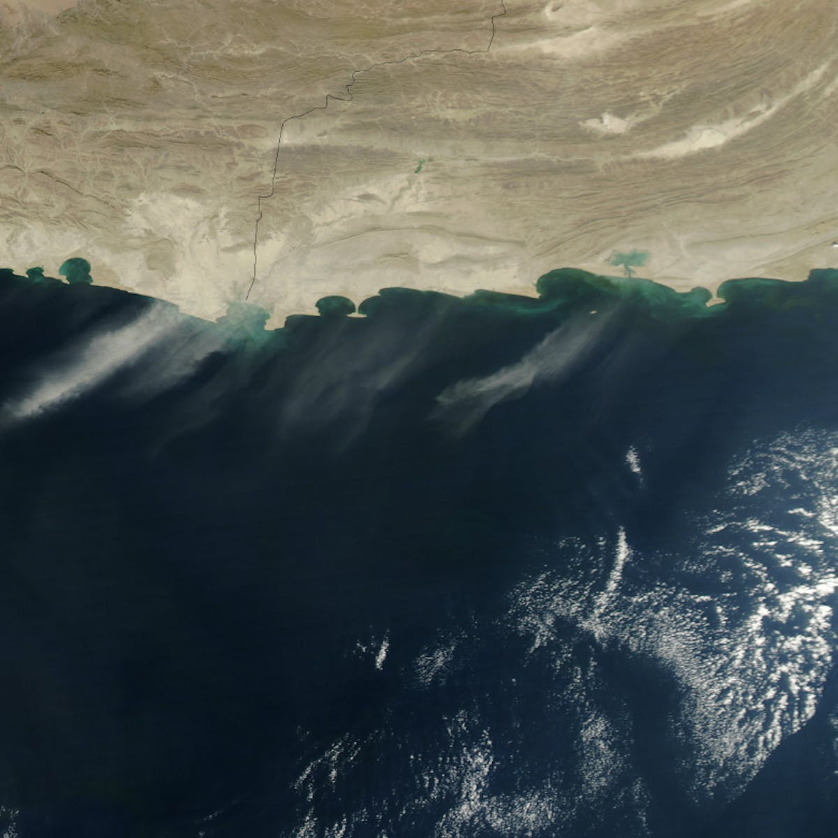 "Oxygen-Free ""Dead Zone"" as Big as Scotland Discovered in Arabian Sea"