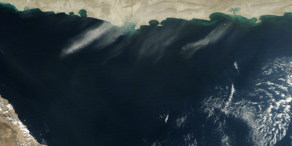"""Scotland-Sized """"Dead Zone"""" in Arabian Sea Is a """"Disaster Waiting to Happen"""""""