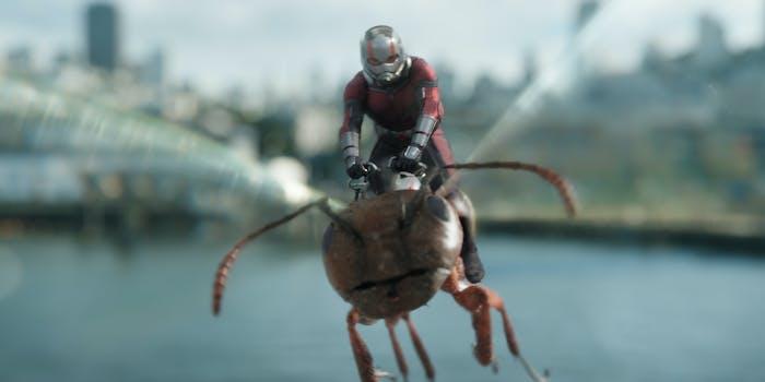 Ant-Man Avengers 4 Quantum Realm