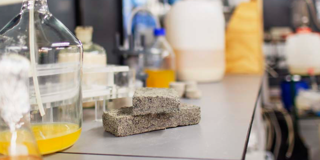 Scientists Discover Bizarre Way to Build a House Out of Human Urine