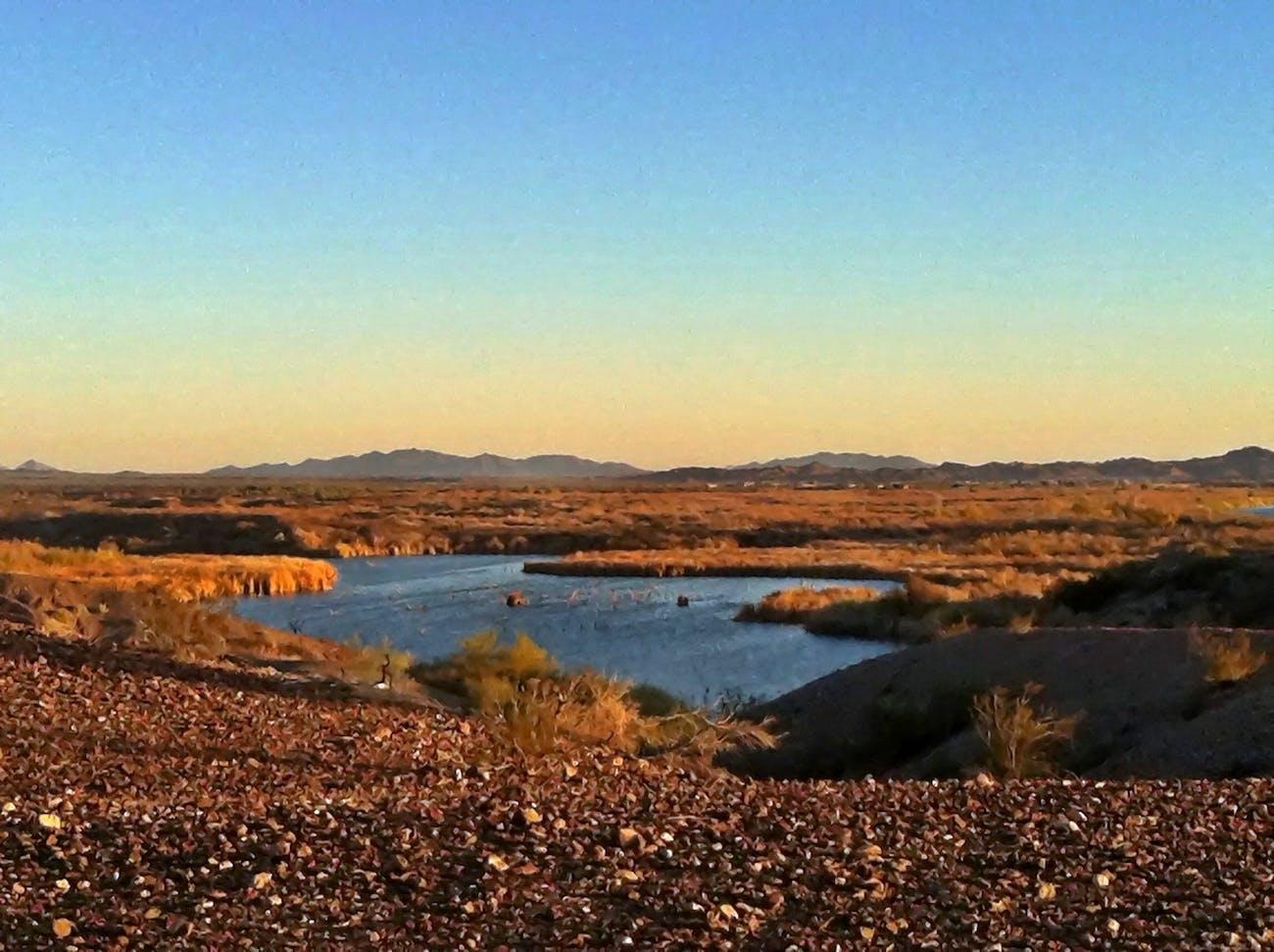 Imperial Wildlife Reserve, Yuma, Arizona