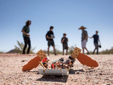 This Crawling C-Turtle Robot Could Hunt For Landmines