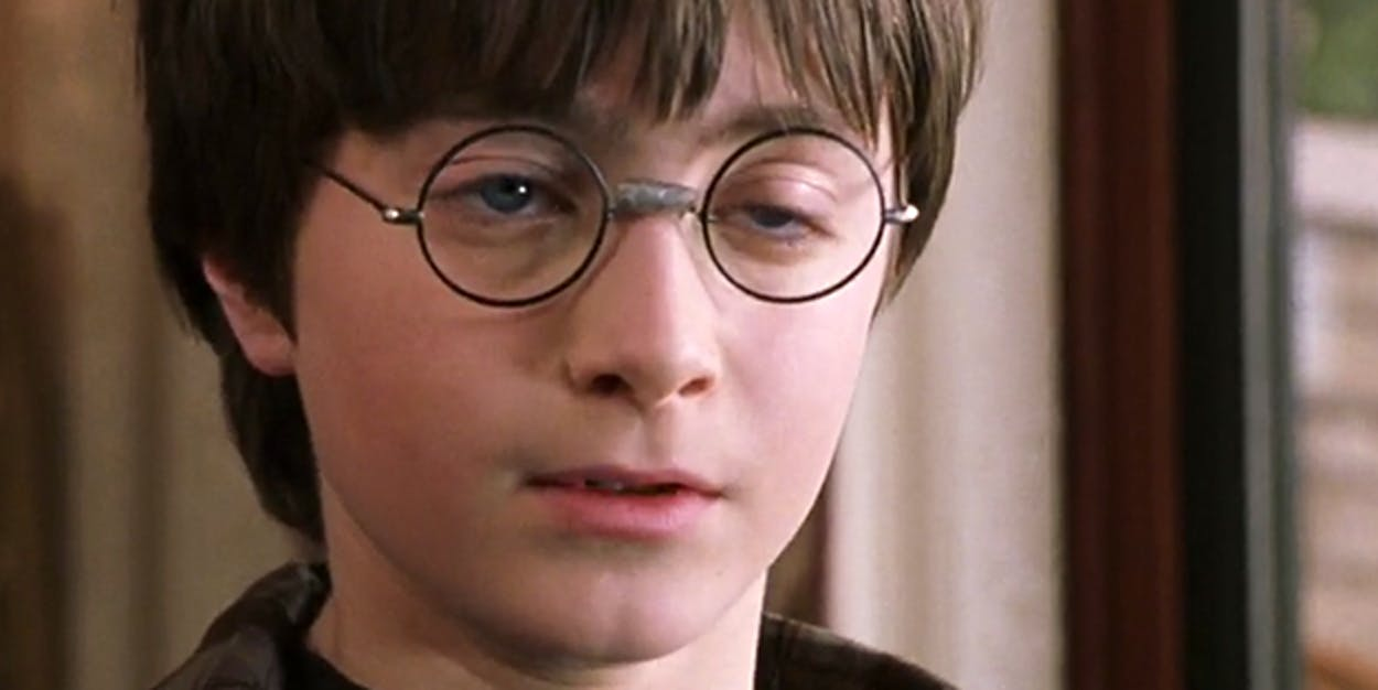Was the Wizarding World in Harry Potter's head?