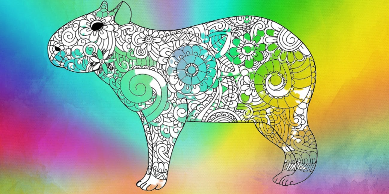 capybara coloring book