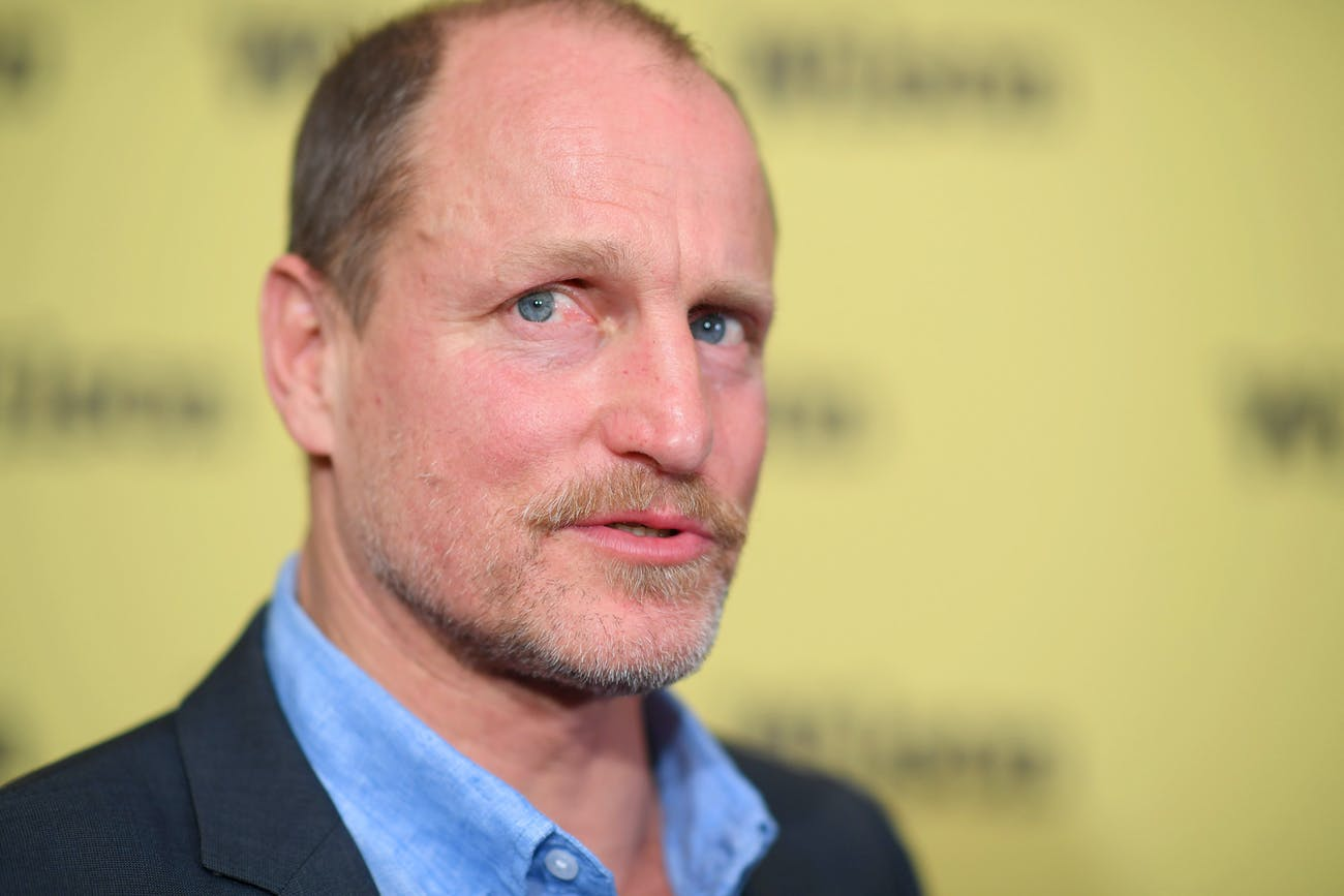 NEW YORK, NY - MARCH 19: Actor Woody Harrelson attends the 'Wilson' New York Screening at the Whitby Hotel on March 19, 2017 in New York City. (Photo by Dimitrios Kambouris/Getty Images)