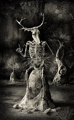 Spooky Pooka