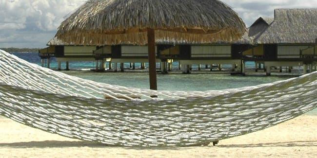 Hammock - Polynesia banner
