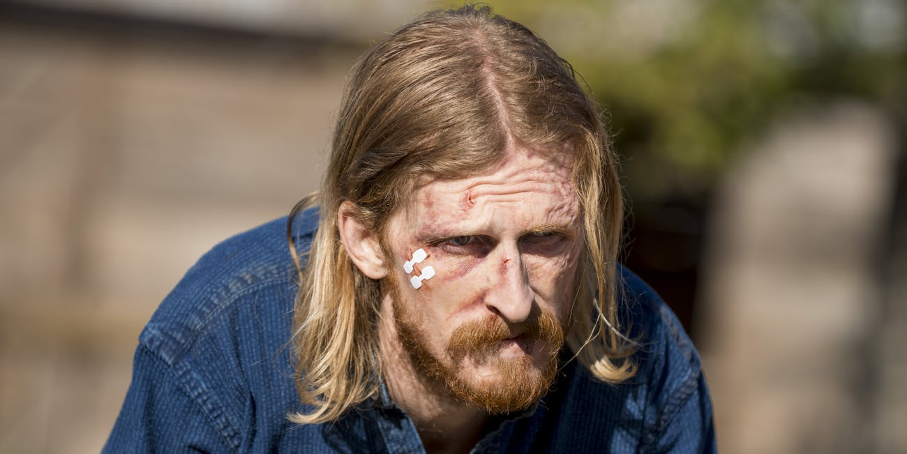 the walking dead dwight austin amelio