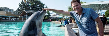 donny and the dolphin