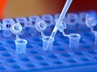 DNA digestion tubes