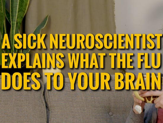 A neuroscientist explains exactly what's going on with your brain as you deal with the flu.