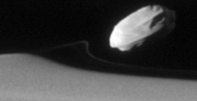 A faint line follows Daphnis which comes from a packet of material Daphnis picked up that is now spreading out