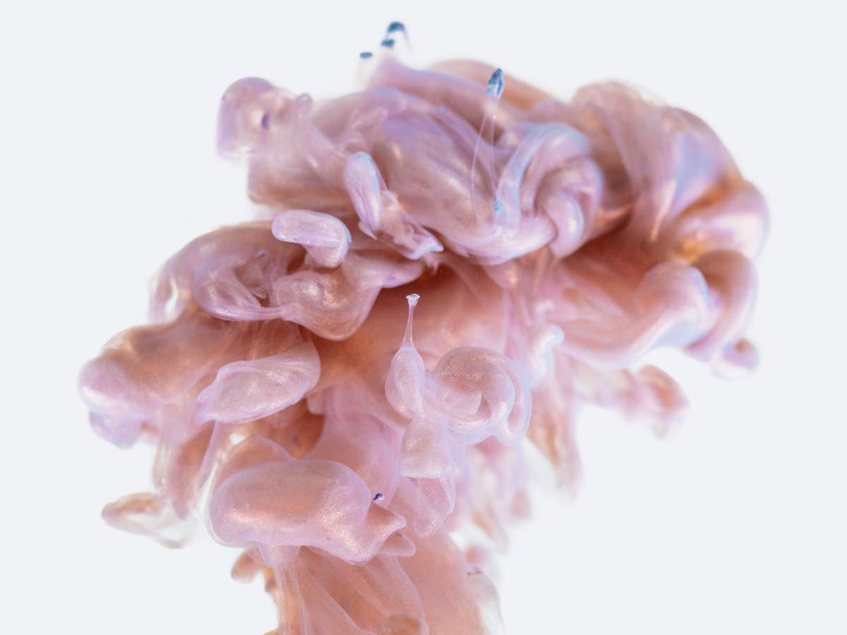"""Artificially Created Tiny Brain """"Organoids"""" Show Signs of Neural Activity"""