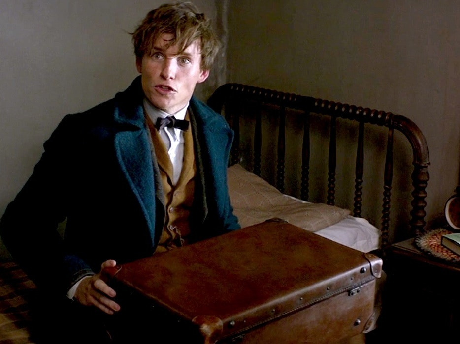 Newt's 'Fantastic Beasts' Case Contains Entire Habitats