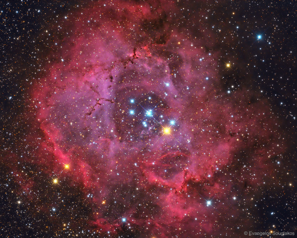 The Rosette Nebula has been forming new stars for about four million years.