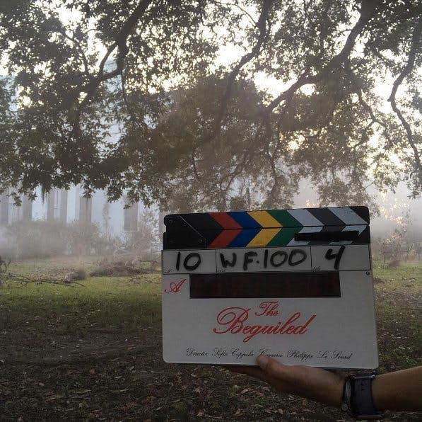 Sofia Coppola's 'The Beguiled'