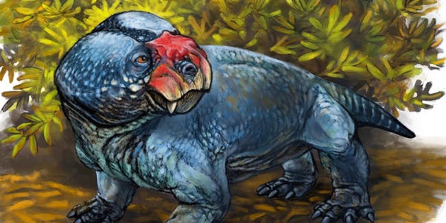A precursor to mammals has been named Bubasaurus phylloxyron.