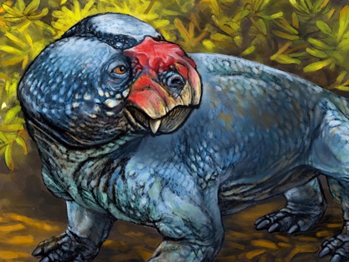 A precursor to mammals has been named Bubasaurus phylloxyron.