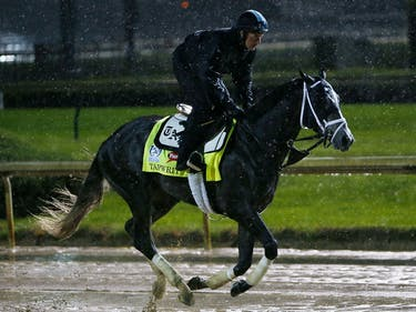 Mud and Math: How the Latest Kentucky Derby Odds Were Made