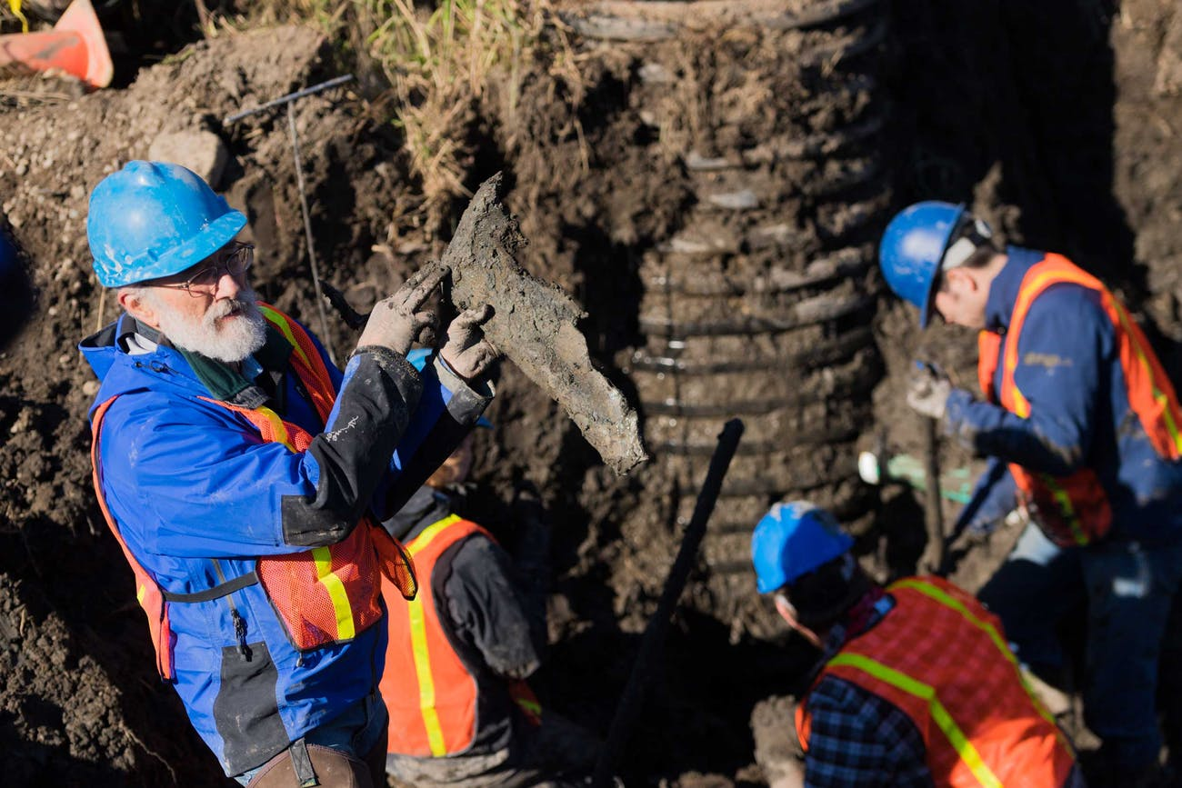 fisher mammoth dig site