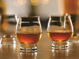 The Best Whiskey Tasting Glasses for Any Type of Drinker