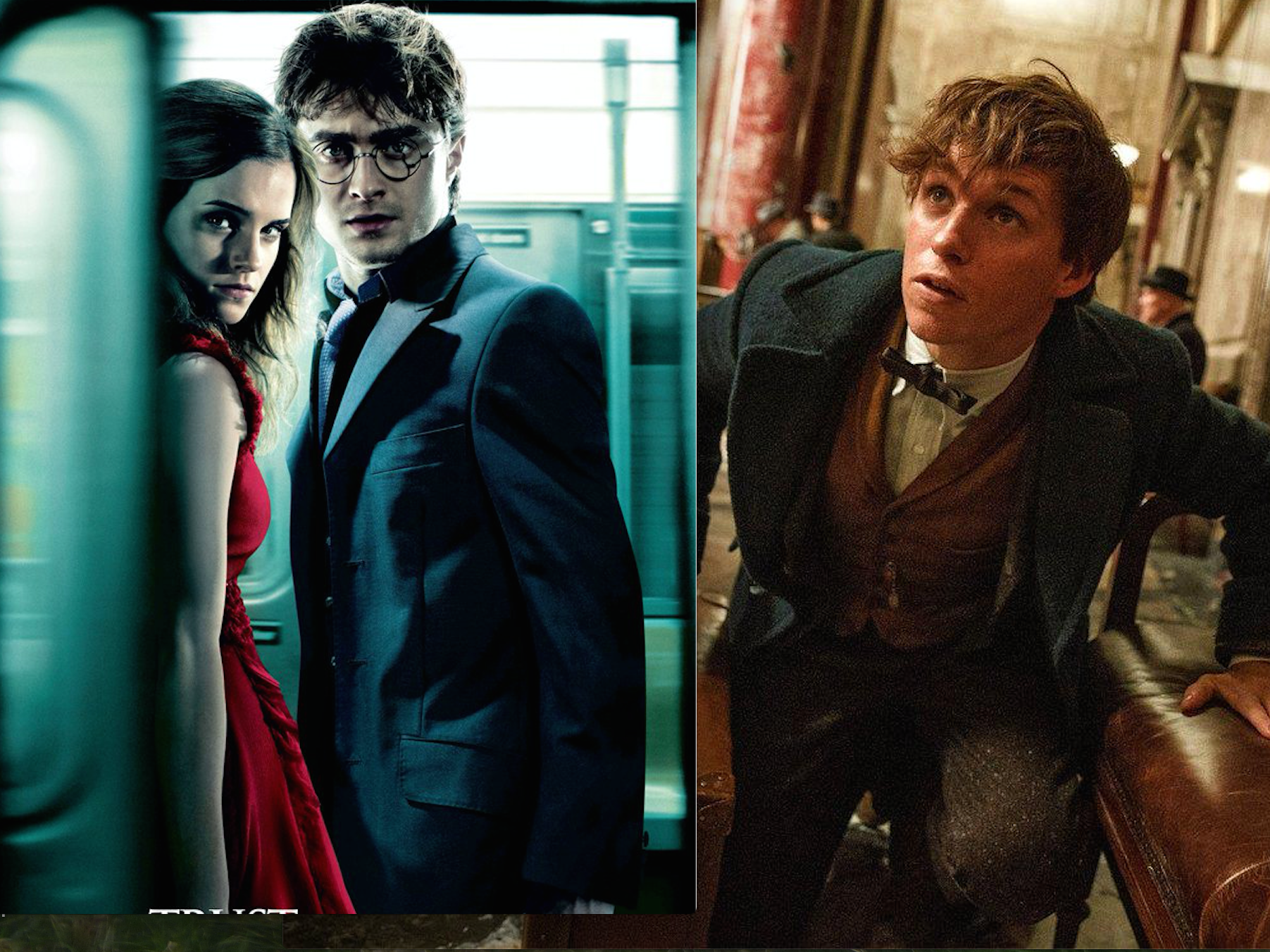 Newt Scamander and Harry Potter Crossed Paths at Hogwarts