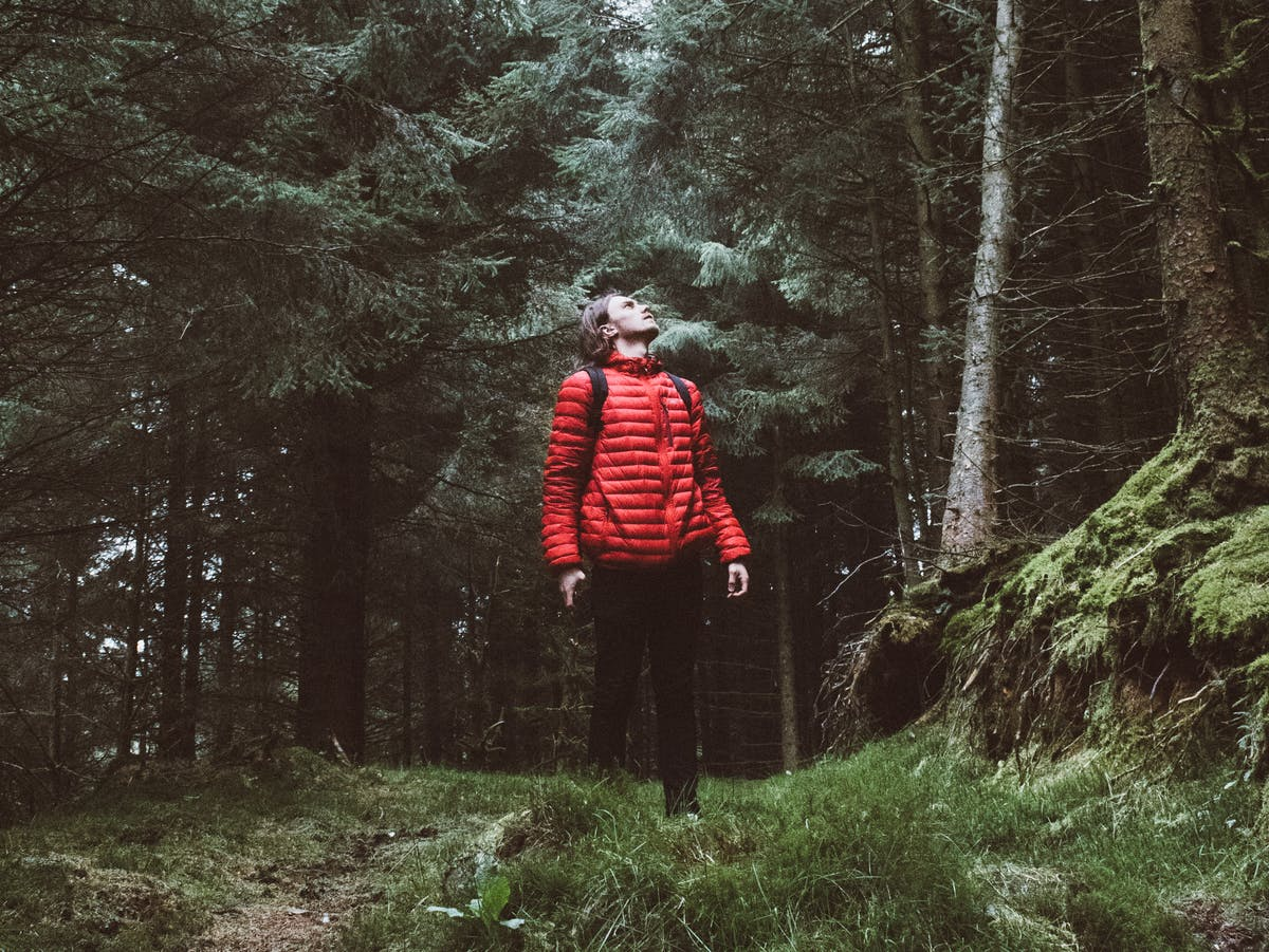 "Why ""Forest Bathing"" Can Boost Your Physical and Mental Health"
