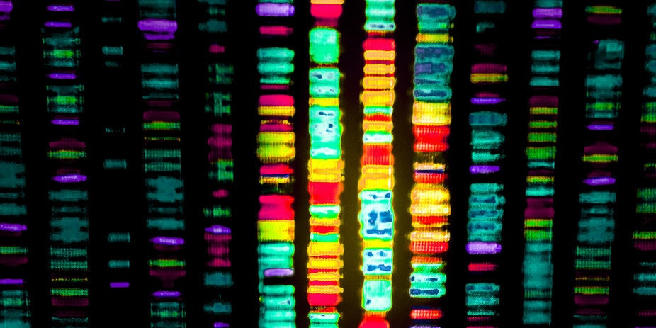 Human genome editing raises a lot of questions.