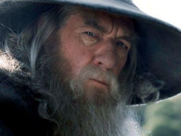 Ian McKellen Didn't Play Dumbledore Because of Wizard Beef