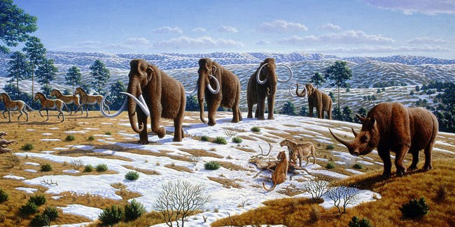 Ice age fauna of northern Spain