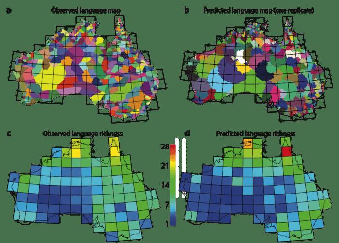 Language Australia diversity spacing evolution indigenous colonial