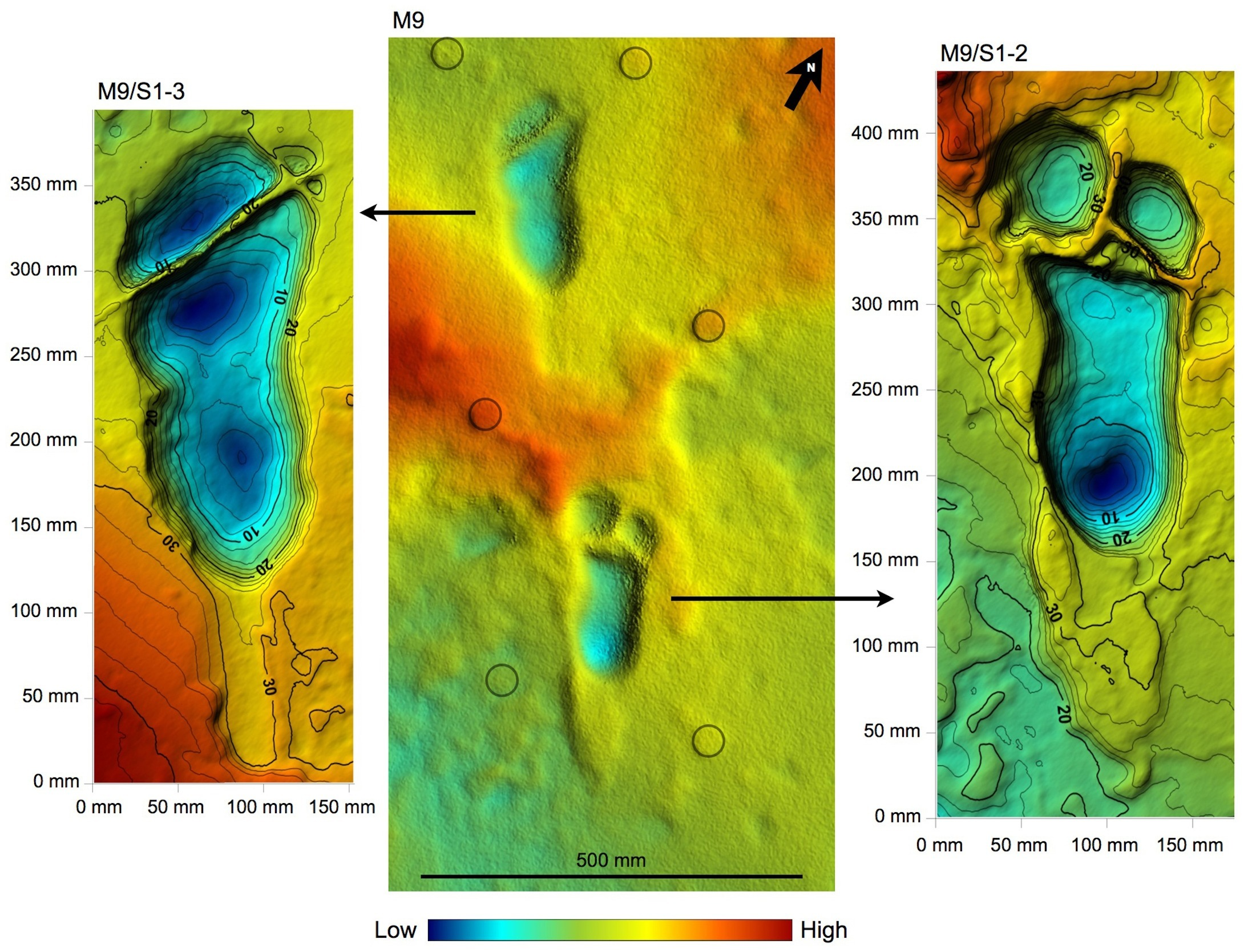 A shade 3D photogrammetric elevation model of the preserved tracks.