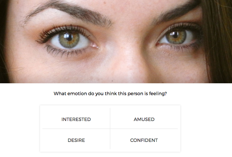 An example of the emotion survey