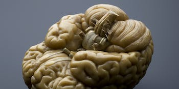 Researchers want to deliver precise doses of drugs directly into the proper brain region.