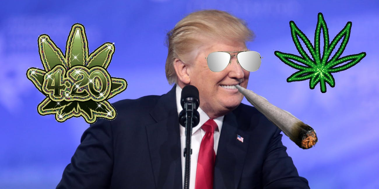 Suddenly, Trump supports easing the federal ban on marijuana
